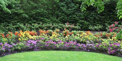 Make an Adventure Garden