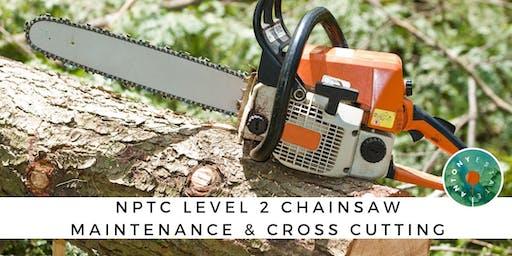 NPTC Level 2 Chainsaw Maintenance & Cross Cutting