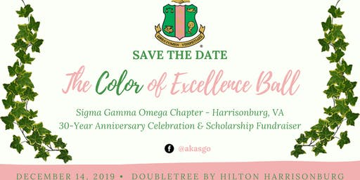 AKA Color of Excellence Gala