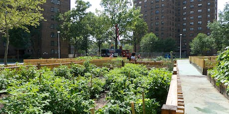 Charting the Future of Urban Agriculture in New York City tickets