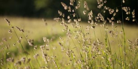 Common Grasses, Sedges and Rushes of Nottinghamshire tickets
