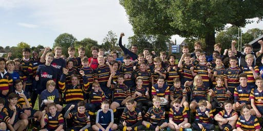 Old Colfeians August camp for ages 6 to 16