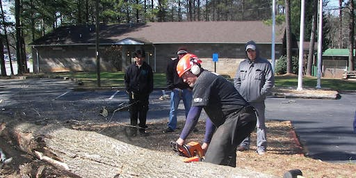 Chainsaw Safety Concepts