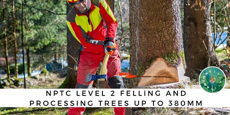 NPTC Level 2 Felling and Processing Trees tickets