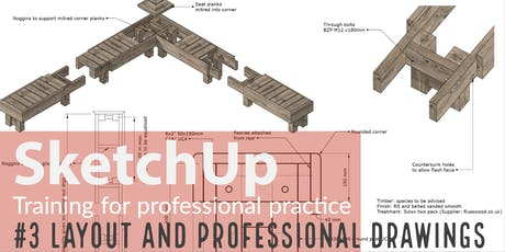 SketchUp training: Professional drawings with Layout tickets