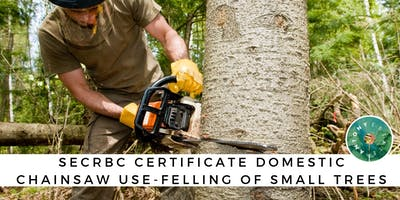 SECRBC Certificate Domestic Chainsaw Use: Felling of Small Trees