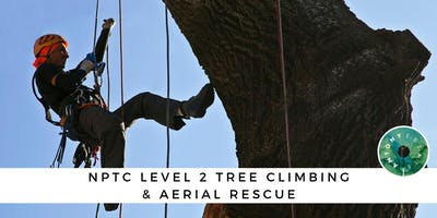 NPTC Level 2 Tree Climbing & Aerial Rescue