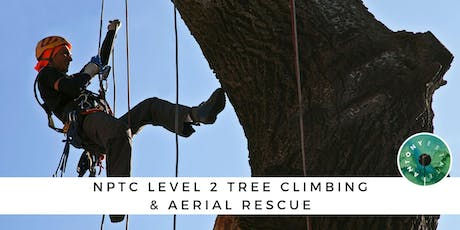 NPTC Level 2 Tree Climbing & Aerial Rescue tickets