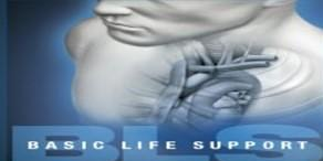AHA CPR / BLS HEARTCODE - 1/2 ONLINE WITH SKILL SESSION BY APPT.