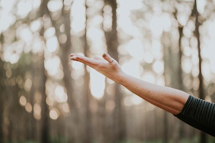 Image de Festival de Yoga Kundalini du Québec