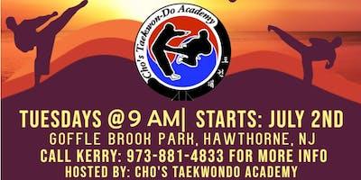 Free Beginner Taekwondo for All!
