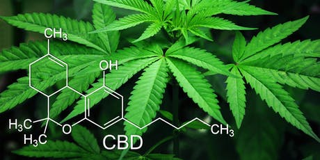 Healthy Talk: Understanding CBD tickets