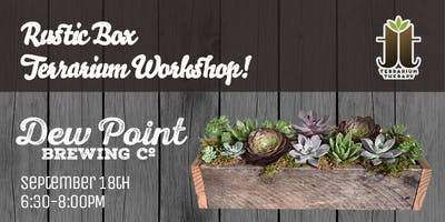 Rustic Box Succulent Planter at Dew Point Brewing Company