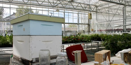 Pollinator Week: Bee Keeping and the Greenhouse tickets