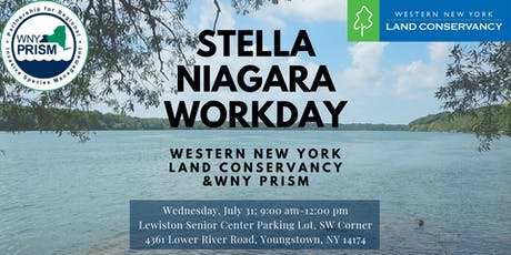 Stella Niagara Workday tickets
