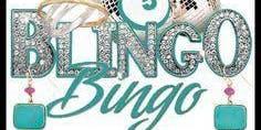 Park Lane Jewelry Blingo Bingo Fundraising Event
