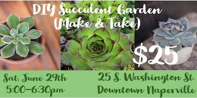 DIY Succulent Garden (Make & Take)