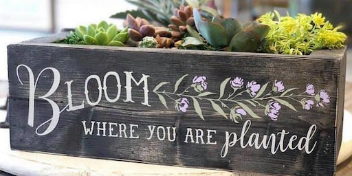 Succulents with Personalized Wooden Boxes