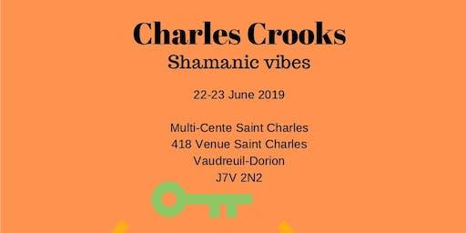 Shamanic Vibes