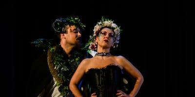 """APERISHAKESPEARE Apericena e Teatro """"Sogno di una"""