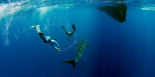 An Audience With...Chloe Winn: Marine Conservationist