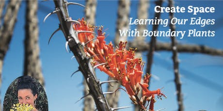 Create Space: Learning Our Edges With Boundary Plants with Dana Aronson tickets