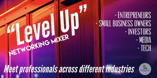 Level Up - Professional Networking Mixer