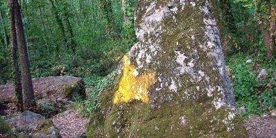 Escursione a Lerici per la Farfalla Dorata