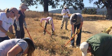 Star Studded Fridays: Restore Habitat at Byrne Preserve tickets