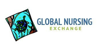 Global Nursing Exchange 2020