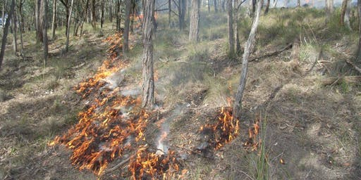 Traditional Indigenous Burning Information Session