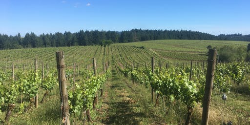 Goodfellow Terroir Series: Whistling Ridge Vineyard & Imperial Restaurant