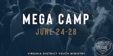 VDYM Mega Camp 2019 tickets