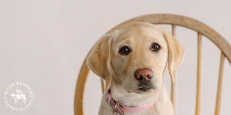 Pet Photography Workshop for dog-parents tickets
