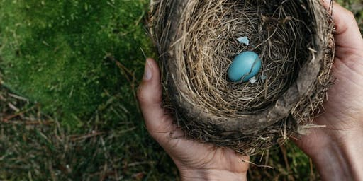 Nest Nurture