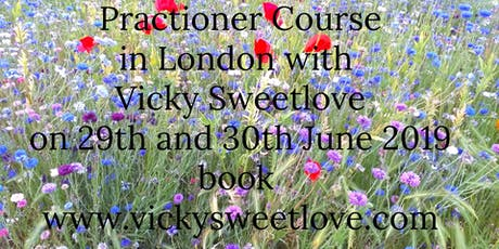 Akashic Connections Practitioner Course tickets