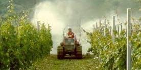 LA RIDUZIONE DEL RISCHIO DI DERIVA E INQUINAMENTO DA AGROFARMACI