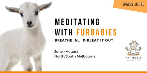 (North Melbourne) Breathe In... & Bleat Out - Meditating with Furbabies