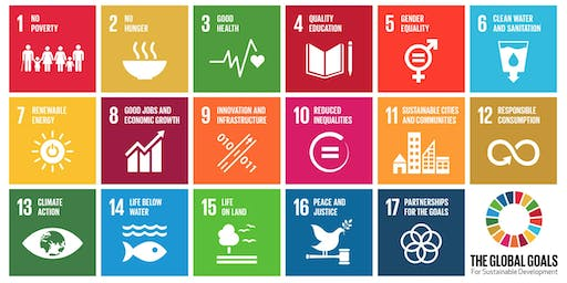 Impact Investing for the Local and Global Goals