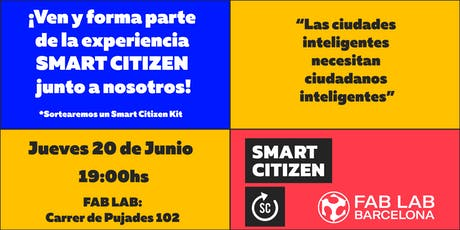 Smart Citizen Experience entradas