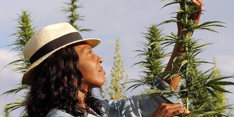 Minnesota's Women of Weed Celebration  tickets