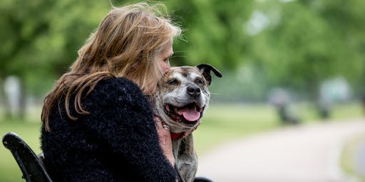 Dogs Trust Freedom Project Scotland Domestic Abuse and Pets Event