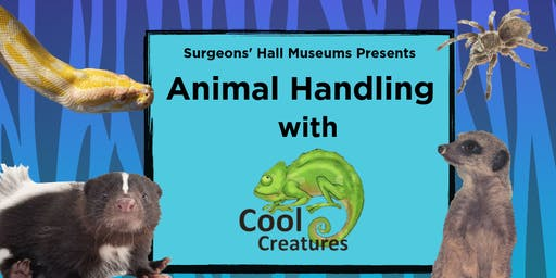Animal Handling with Cool Creatures Age 7+