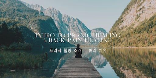 Intro to Pranic Healing + Back Pain Healing / 프라닉 힐링 소개 무료 강의 + 허리 치유