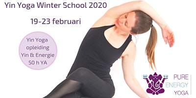 Yin Yoga opleiding Utrecht (50h YA) Meridianen & 5