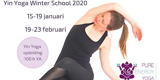 Yin Yoga opleiding Utrecht (100h YA)