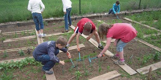 School Dividends: Growing Gardens