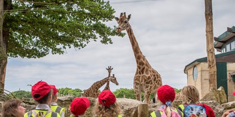 ASE TeachMeet at Marwell Zoo tickets