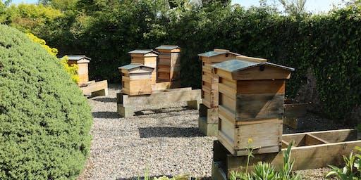 5 Week Beekeeping Theory Course / Cwrs Theori Cadw Gwenyn 5 Wythnos
