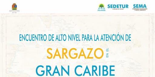 RV:ENCUENTRO DE ALTO NIVEL PARA LA ATENCIÓN DEL SARGAZO EN EL GRAN CARIBE - 27 de junio